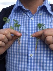 sept crop