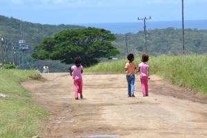 Road to Morgan Bay