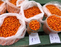 Food market Riga -Seabuckthorn berries