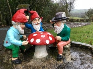 Gnome meeting.