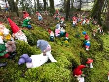 More gnomes.