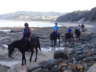 Horseriding on the beach on the Wild Coast.