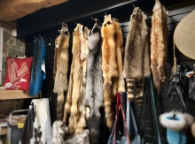 Shopping for fur in Quebec - not.