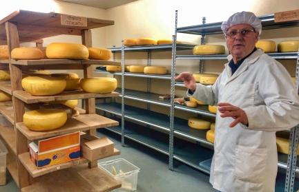 Dancu cheese